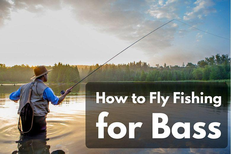 How to fly fishing for bass like a professional even if for How to fly fish for bass