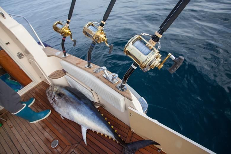 deep sea fishing texas revealed the best deep sea ForDeep Sea Fishing Texas