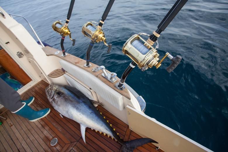 Deep sea fishing texas revealed the best deep sea for Deep sea fishing corpus christi