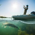 The 5 Best Underwater Fishing Camera in 2018 – Don't Buy a Fish Finder Until You Read This