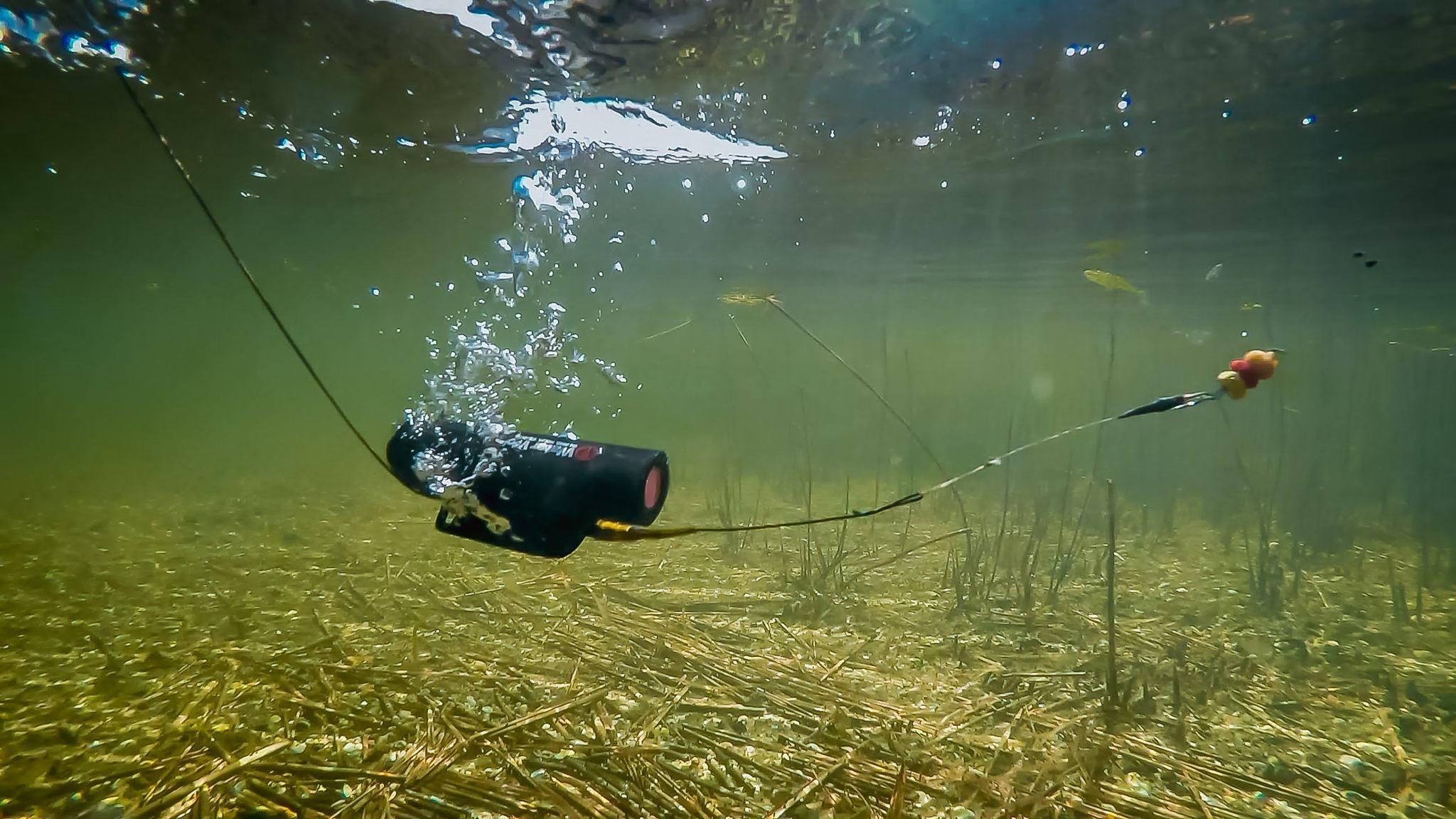 The 5 best underwater fishing camera in 2018 for Underwater fish camera